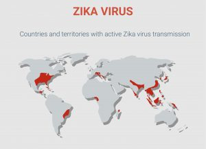 Map showing where Zika can be found