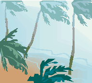 Exceptional Times/Palm Trees Blowing in Wind on Beach Icon